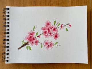 Cherry Blossoms with a Wedge Brush Project - image 1 - student project