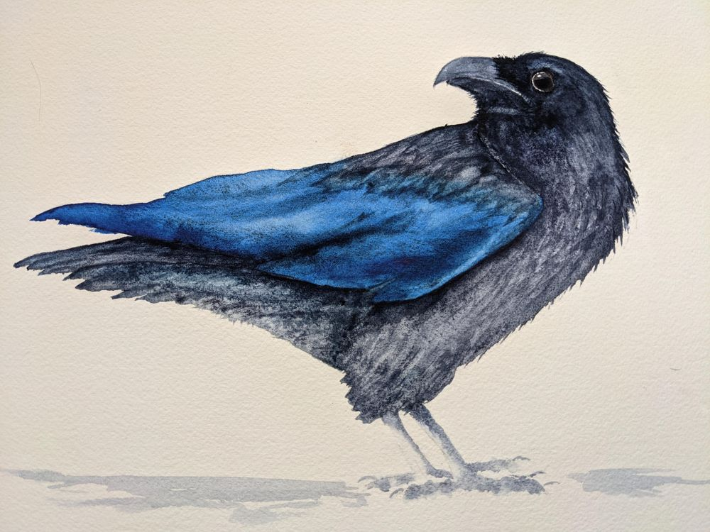 Raven 1 - image 1 - student project