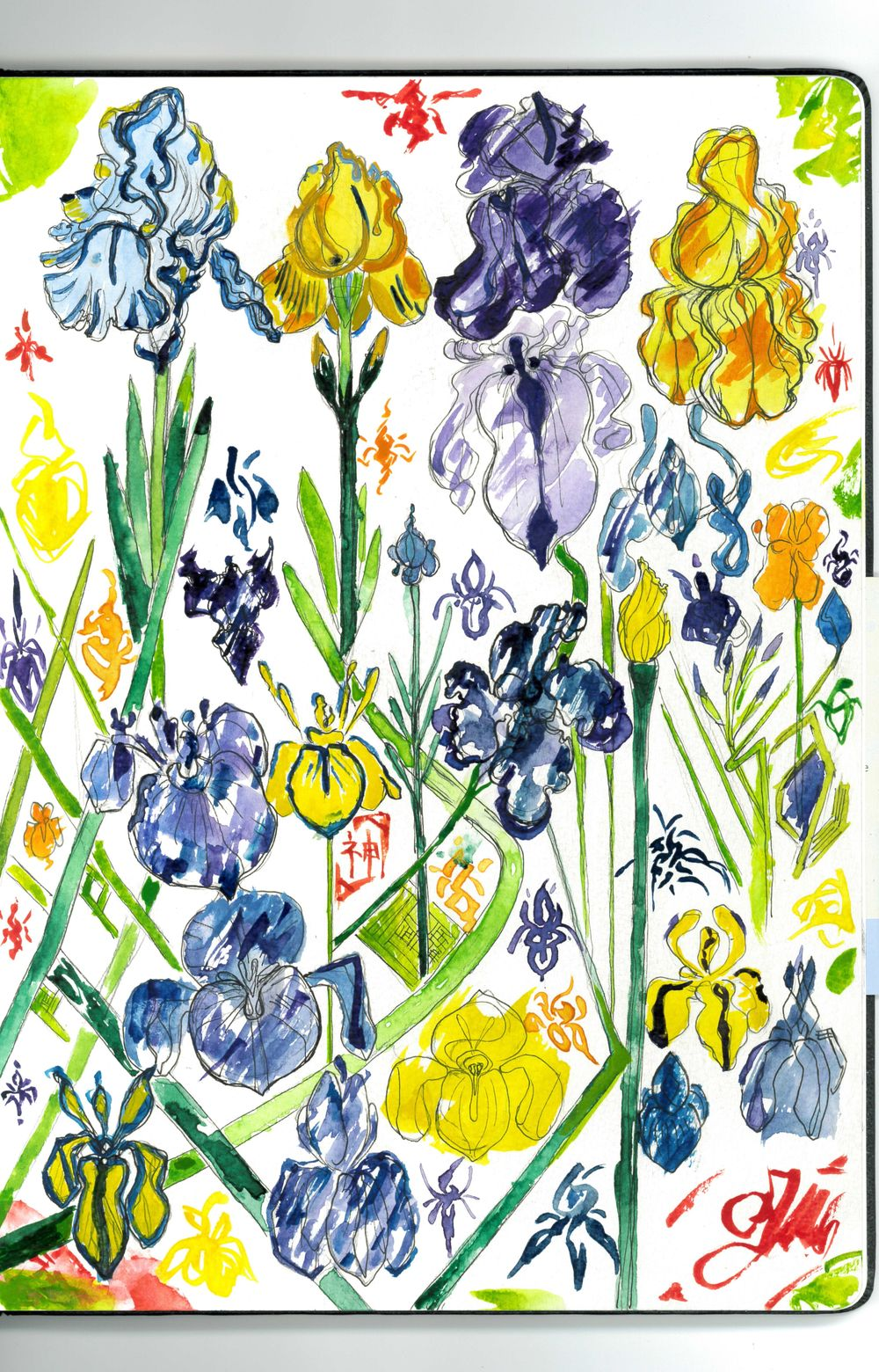 Iris Garden/ Beatriz Barrett's Watercolour Flower Painting Class ! - image 1 - student project
