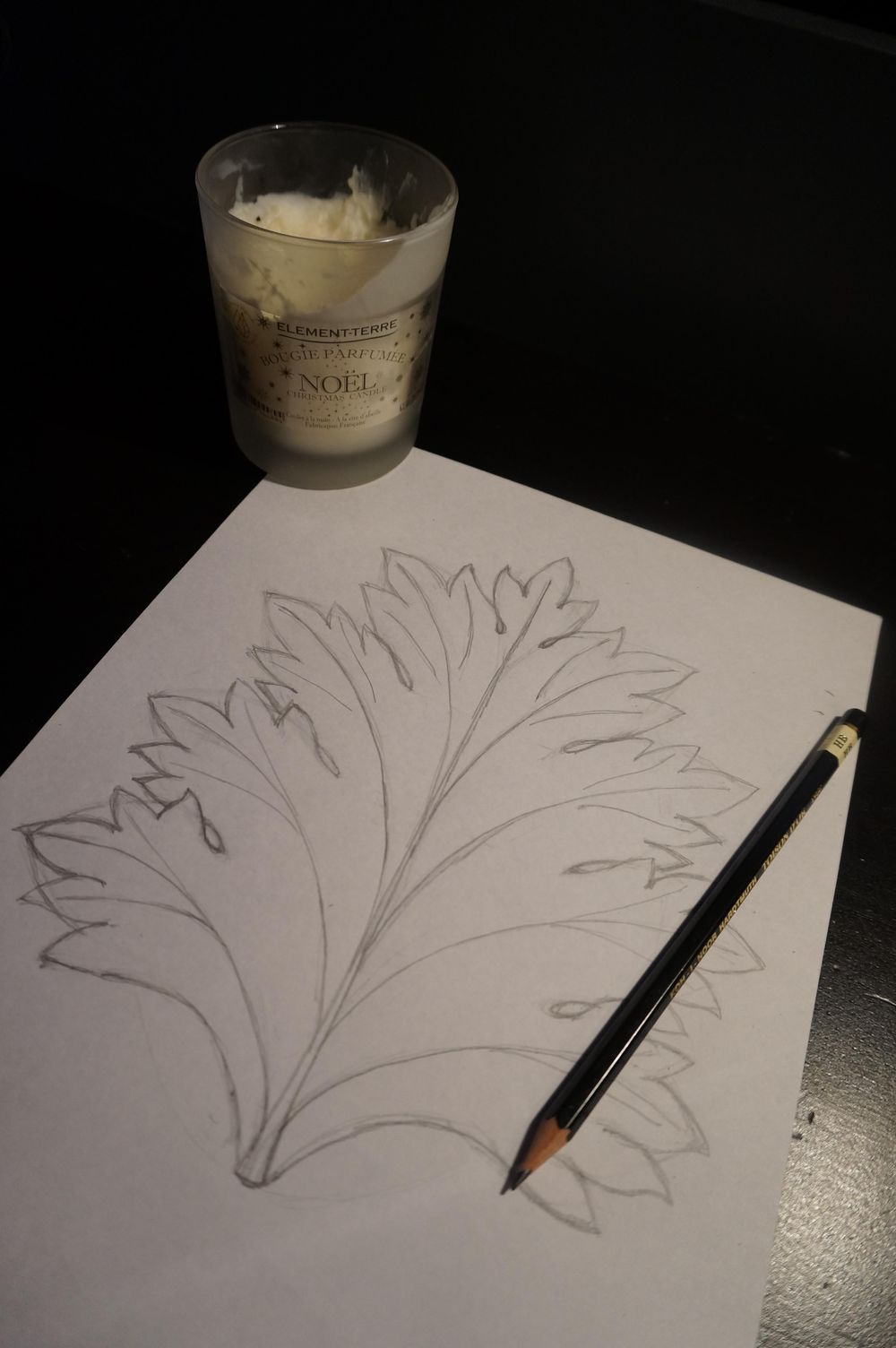 Drawing the Acanthus - image 1 - student project