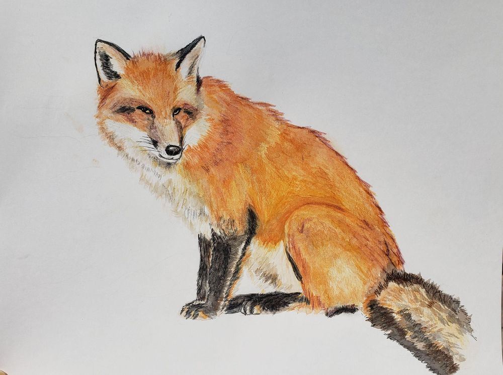 Mixed Media fox - image 7 - student project