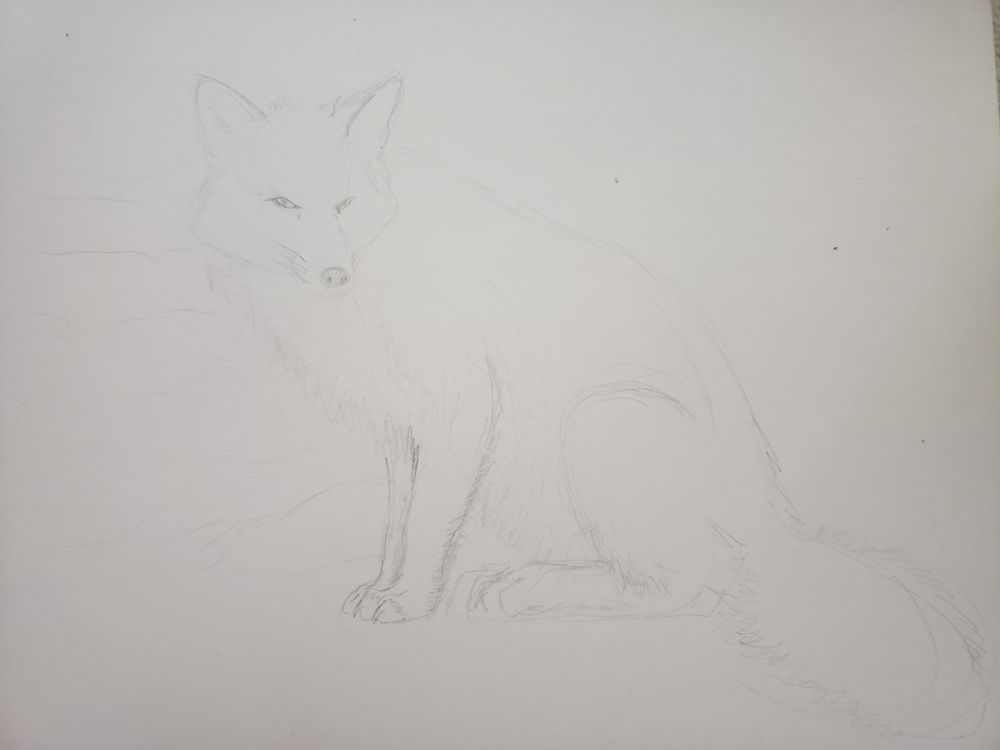 Mixed Media fox - image 1 - student project