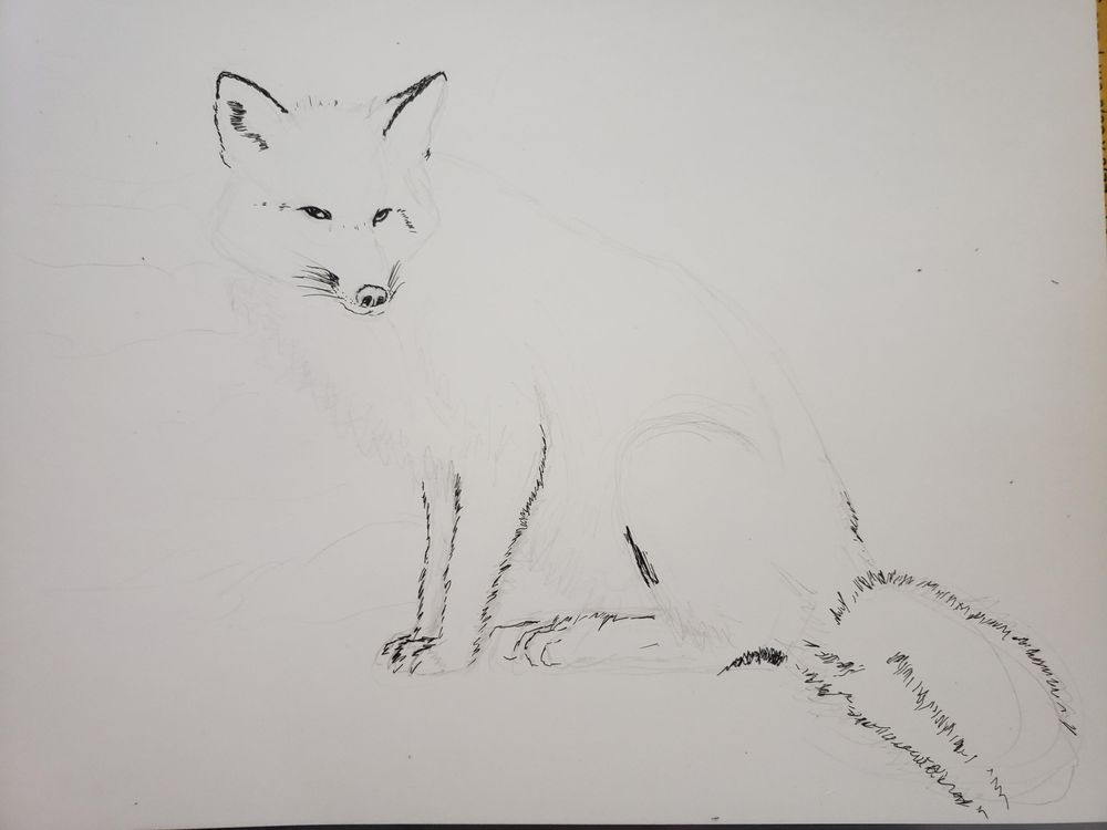 Mixed Media fox - image 2 - student project