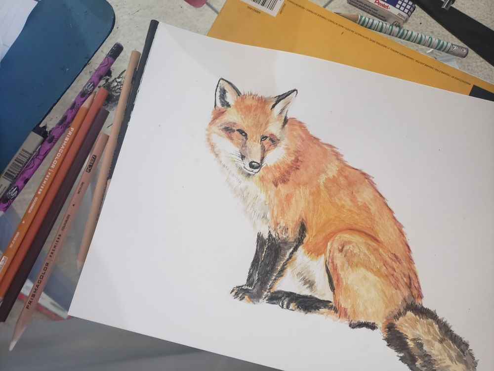 Mixed Media fox - image 5 - student project