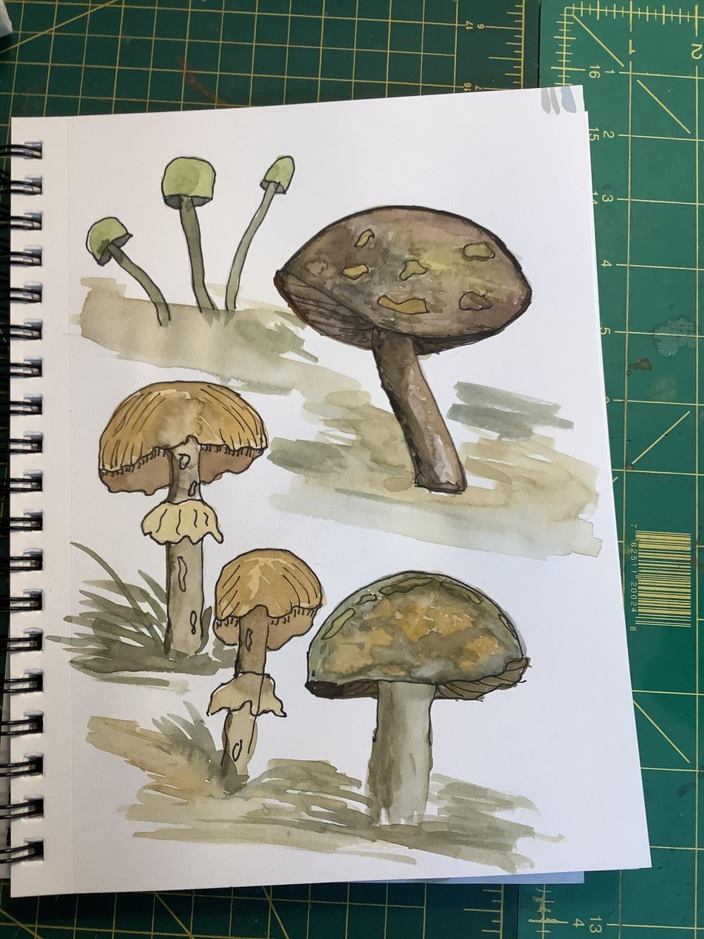 Funky mushrooms - image 2 - student project