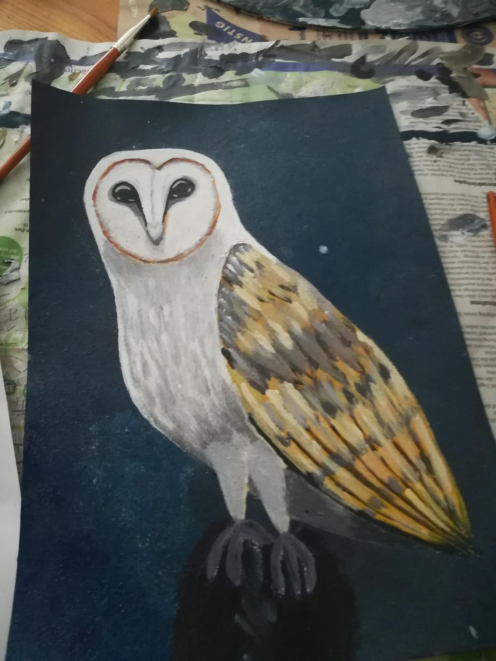 Night Owl - image 1 - student project