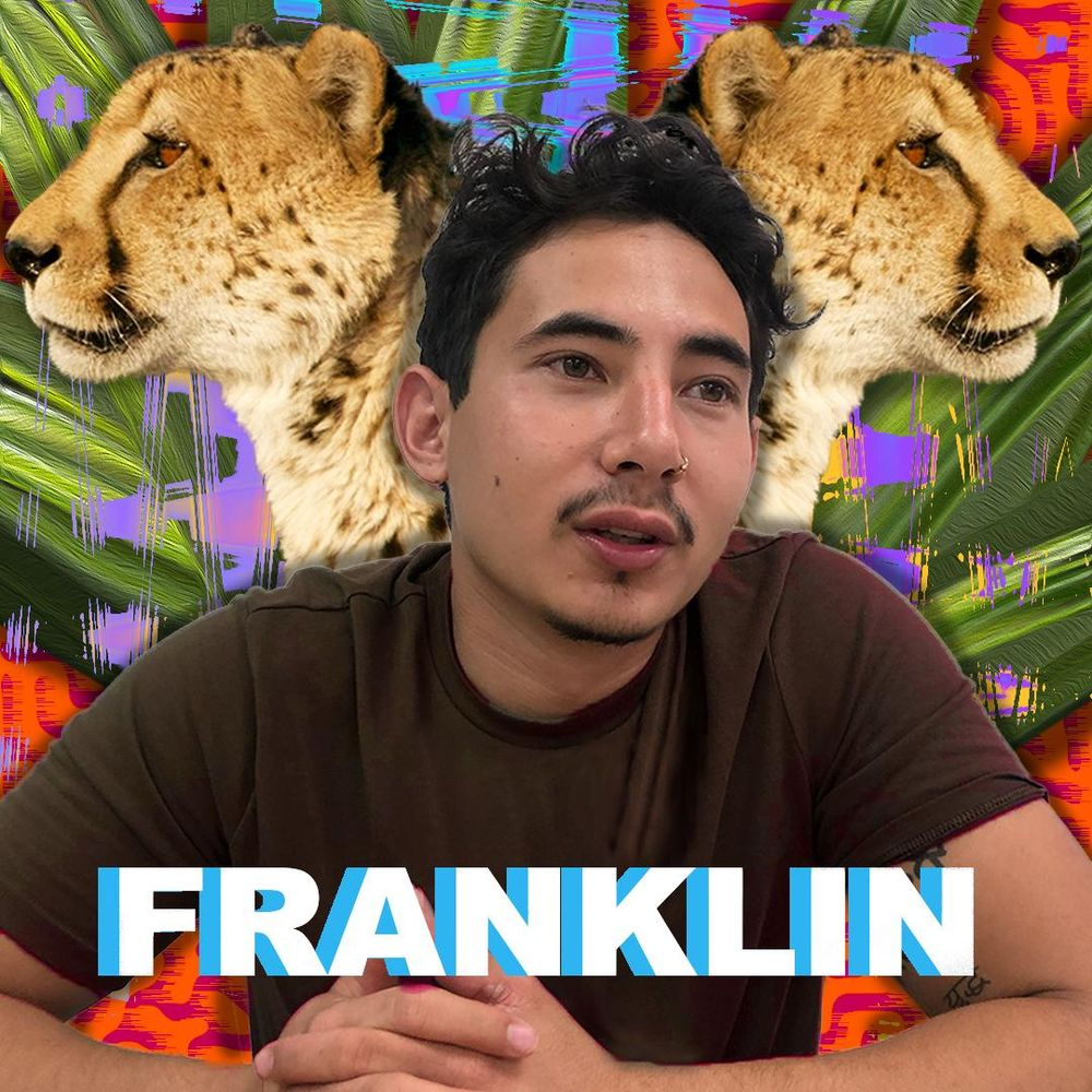 Franklin - image 1 - student project