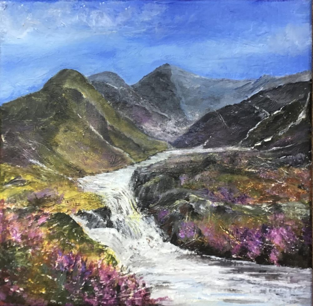 Heather on the fells - image 1 - student project