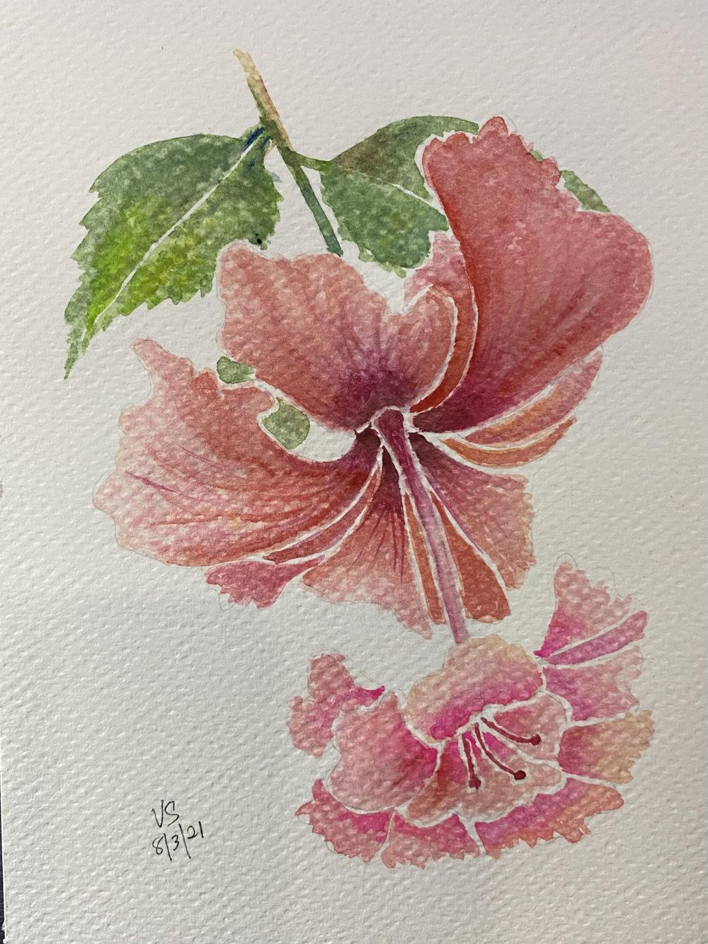 Watercolor Botanicals - image 1 - student project