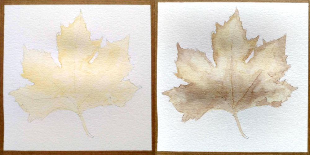 Maple leaf - image 1 - student project