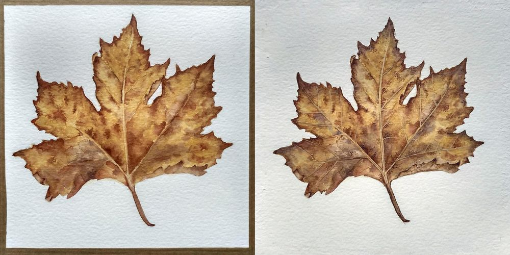 Maple leaf - image 2 - student project