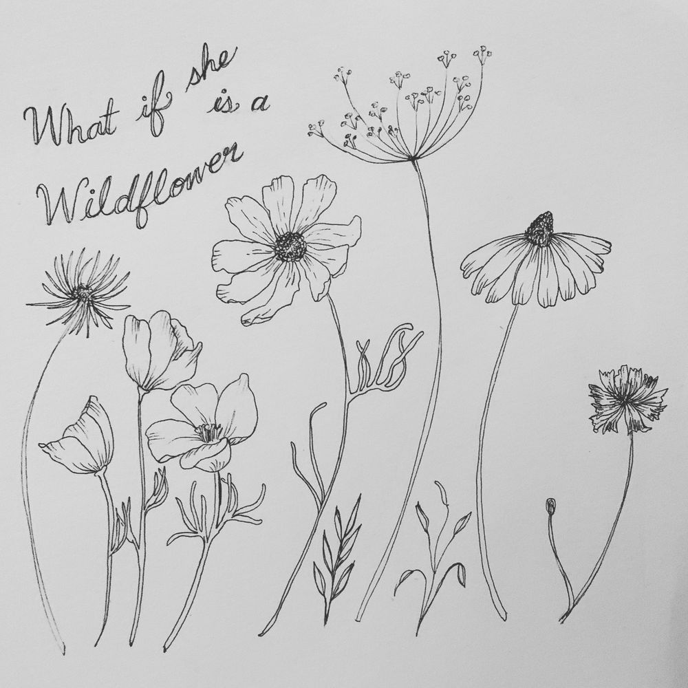 Wildflowers - image 1 - student project