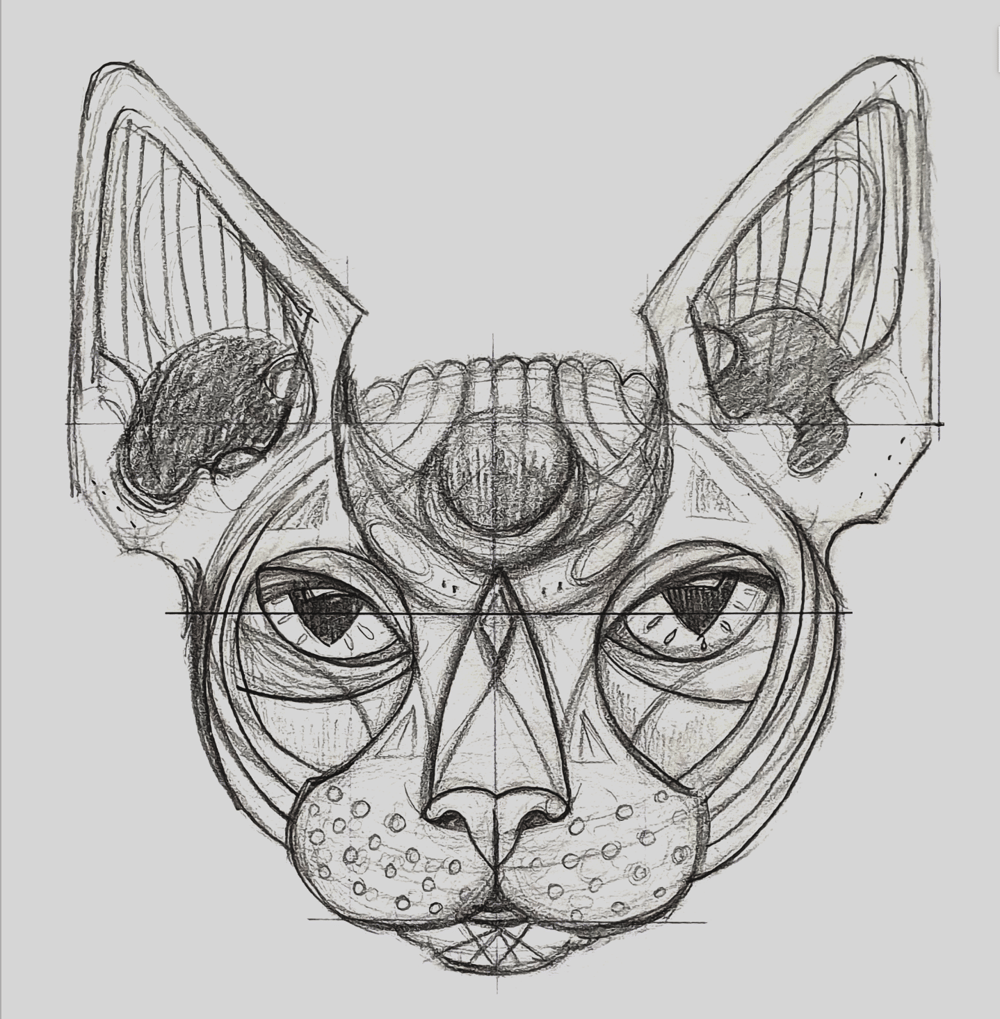 Sphynx head - image 1 - student project
