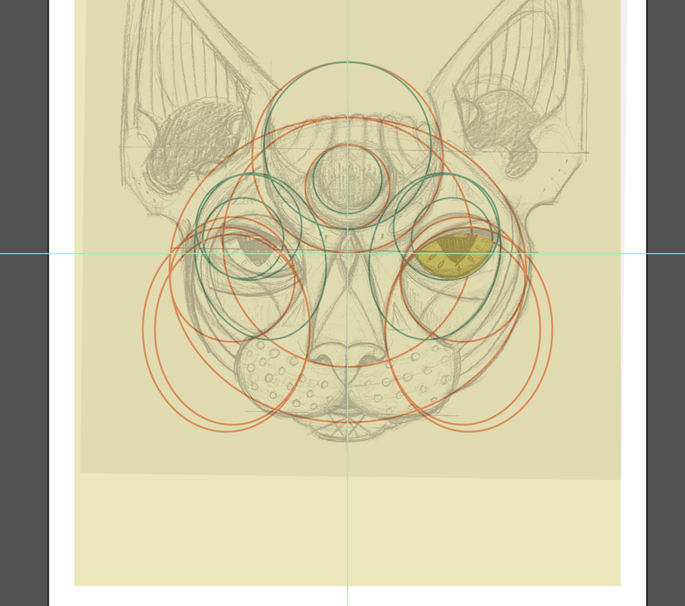 Sphynx head - image 2 - student project
