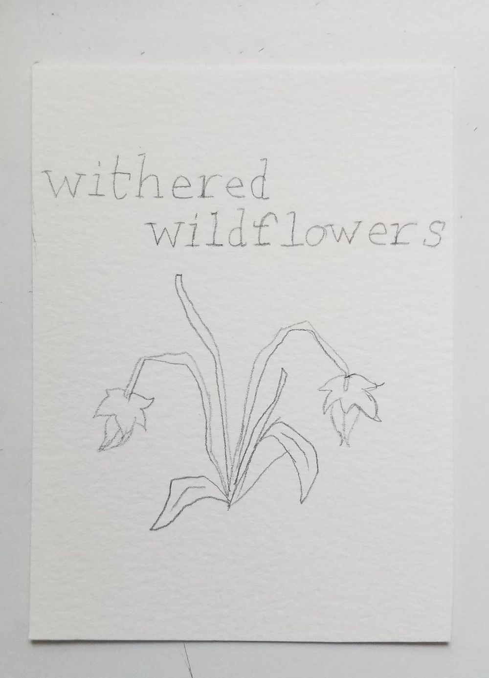 Withered Wildflowers - image 1 - student project