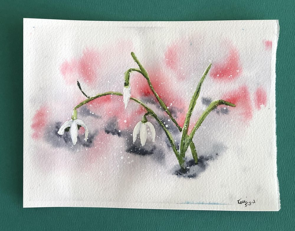 Snow Drops in the Snow - image 1 - student project