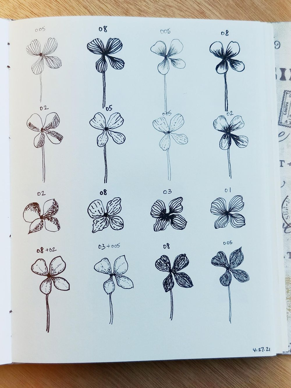 Line Drawings of Flowers | Virginia - image 1 - student project