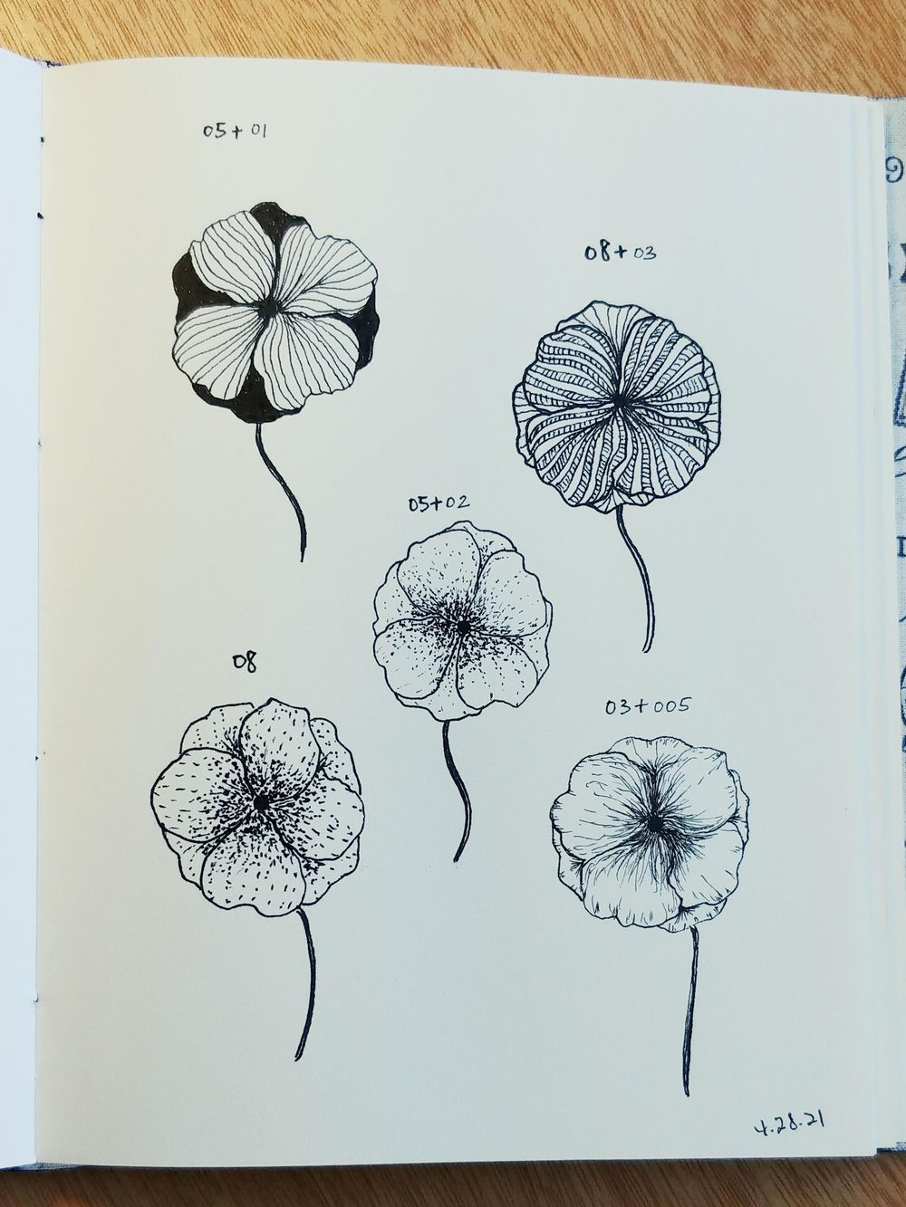 Line Drawings of Flowers | Virginia - image 3 - student project
