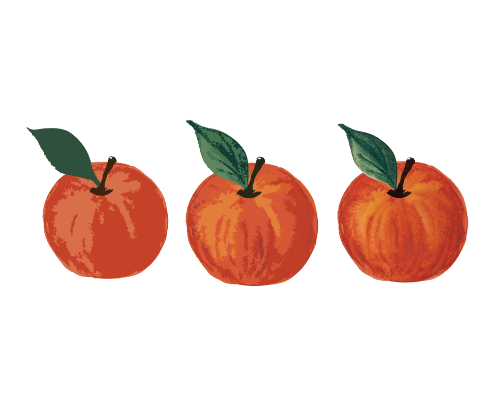 Painted Apples - image 1 - student project