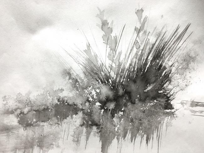 I might become addicted to Wild Grasses :) - image 1 - student project