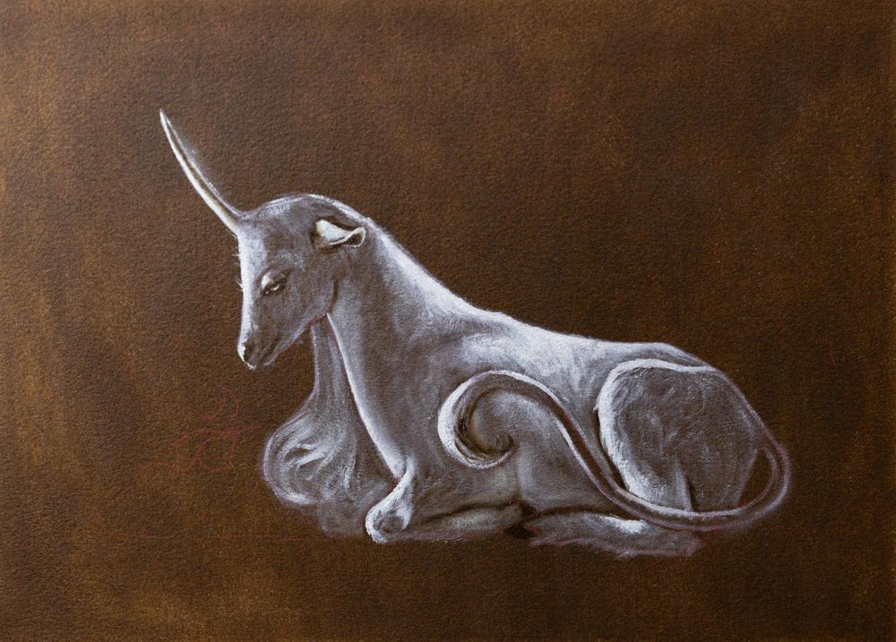 The Unicorn Of The Enchanted Forest - image 2 - student project