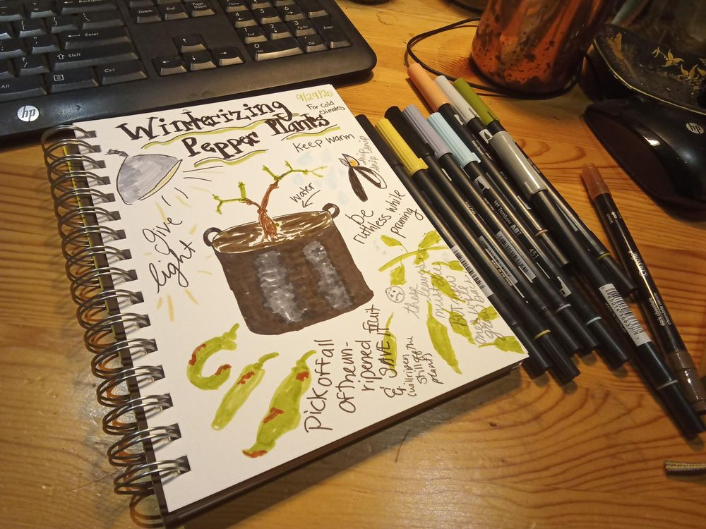 Daily Illustrated Journaling - image 2 - student project