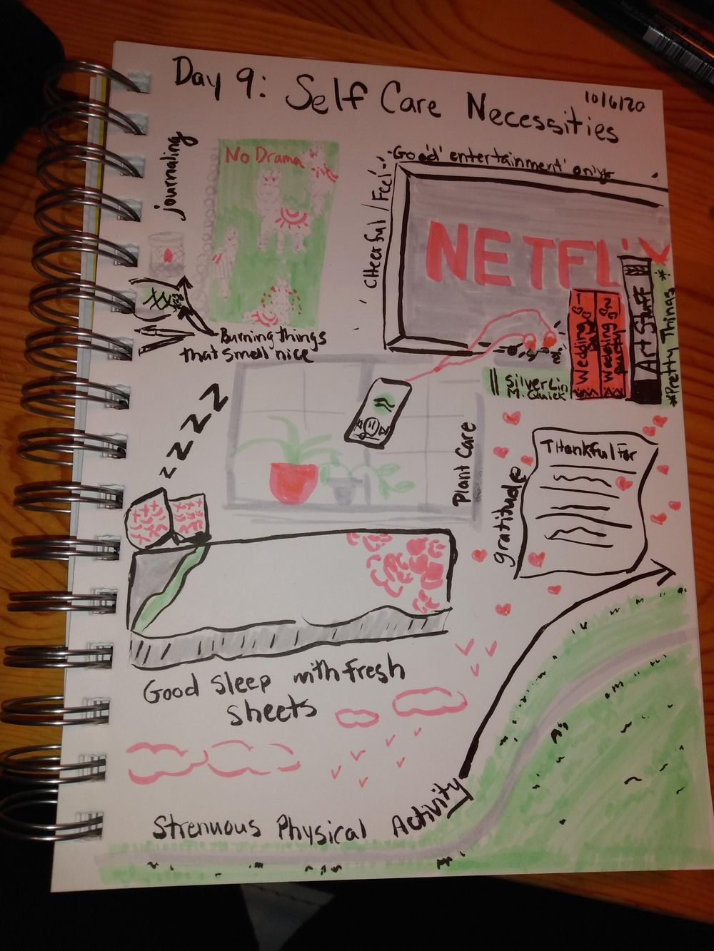 Daily Illustrated Journaling - image 9 - student project