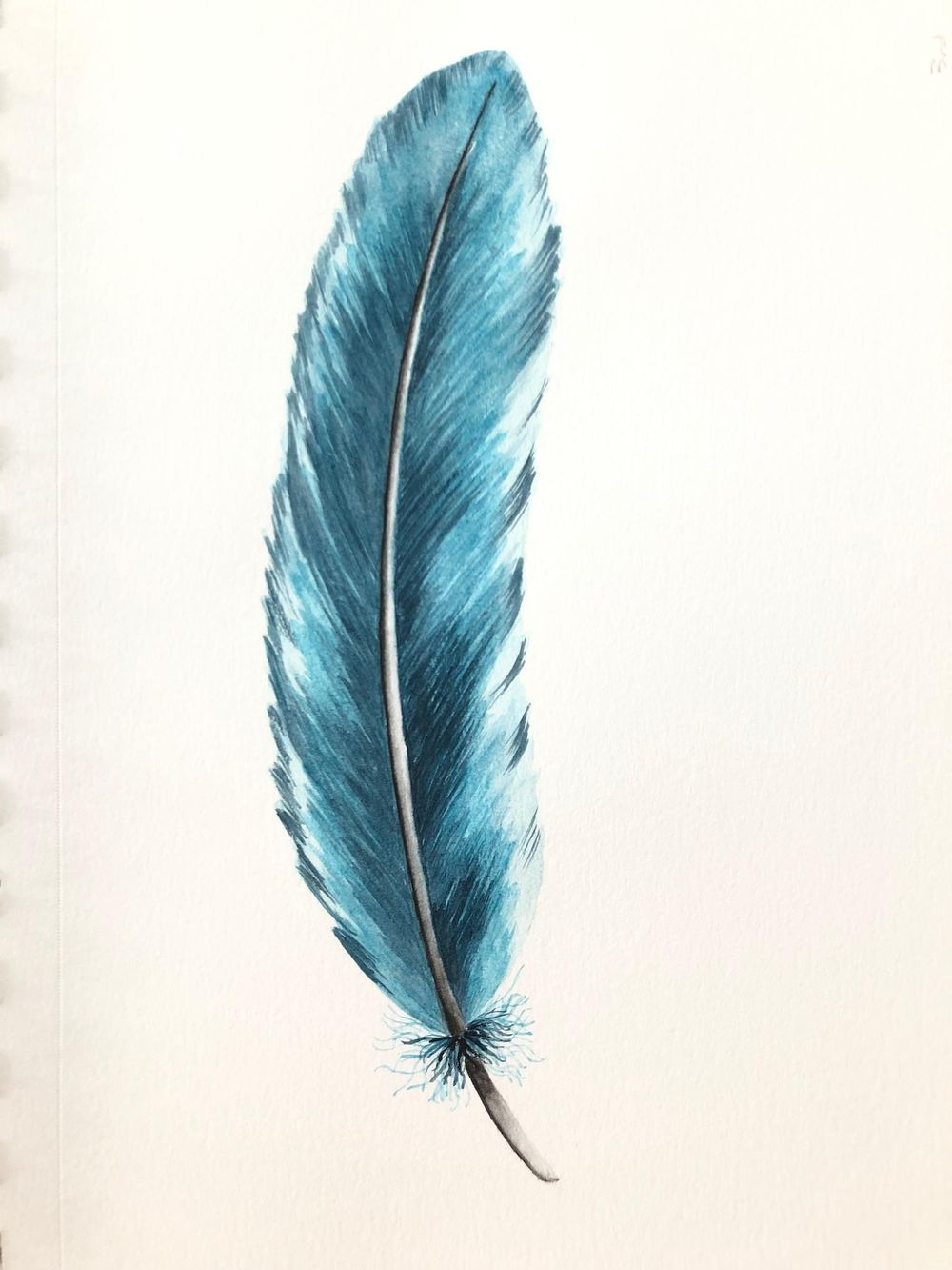 Painting Feathers - image 2 - student project