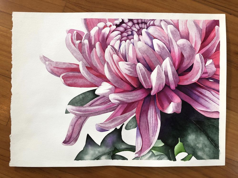 Master Watercolor Techniques: Paint a Watercolor Chrysanthemum - image 2 - student project