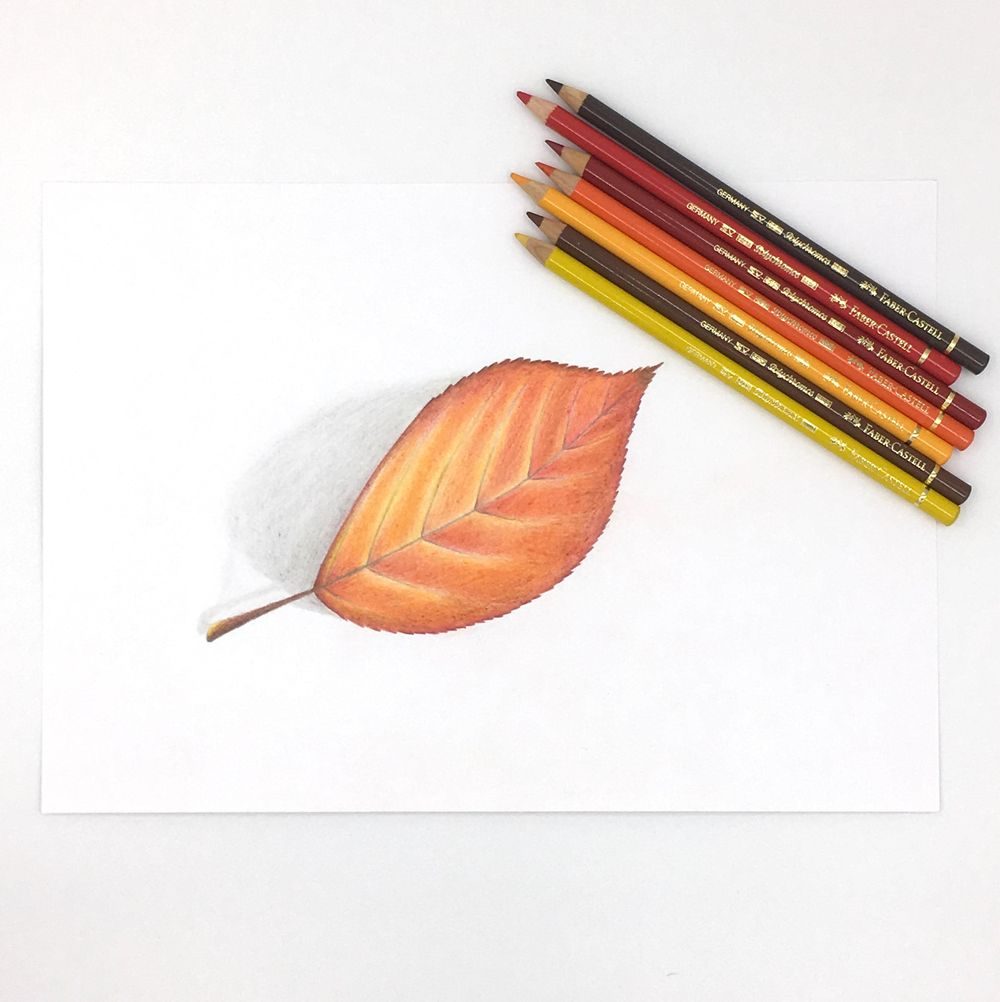 Drawing with Colored Pencils - image 2 - student project