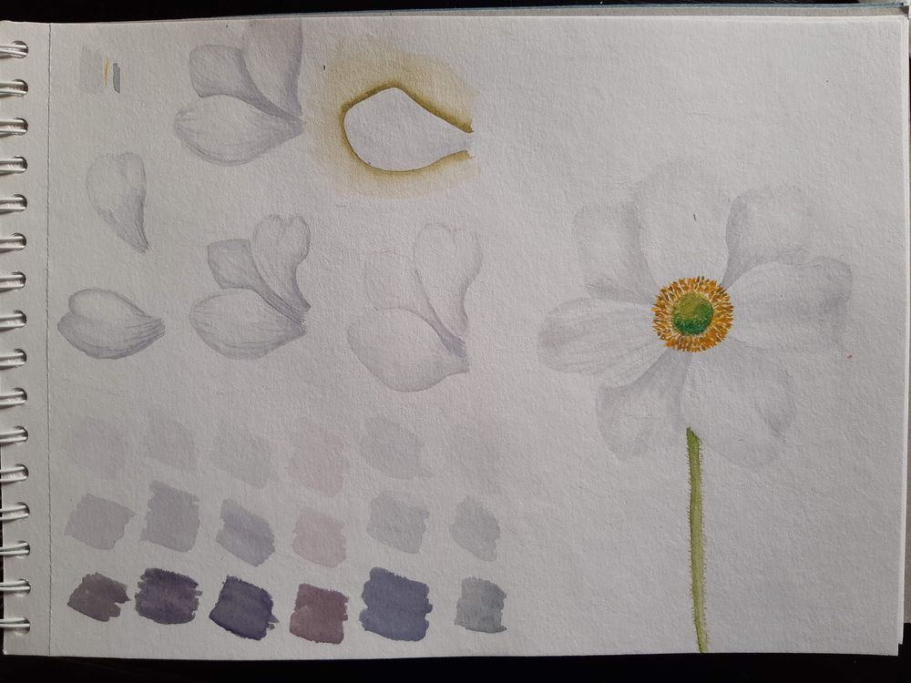 good exercise - image 1 - student project