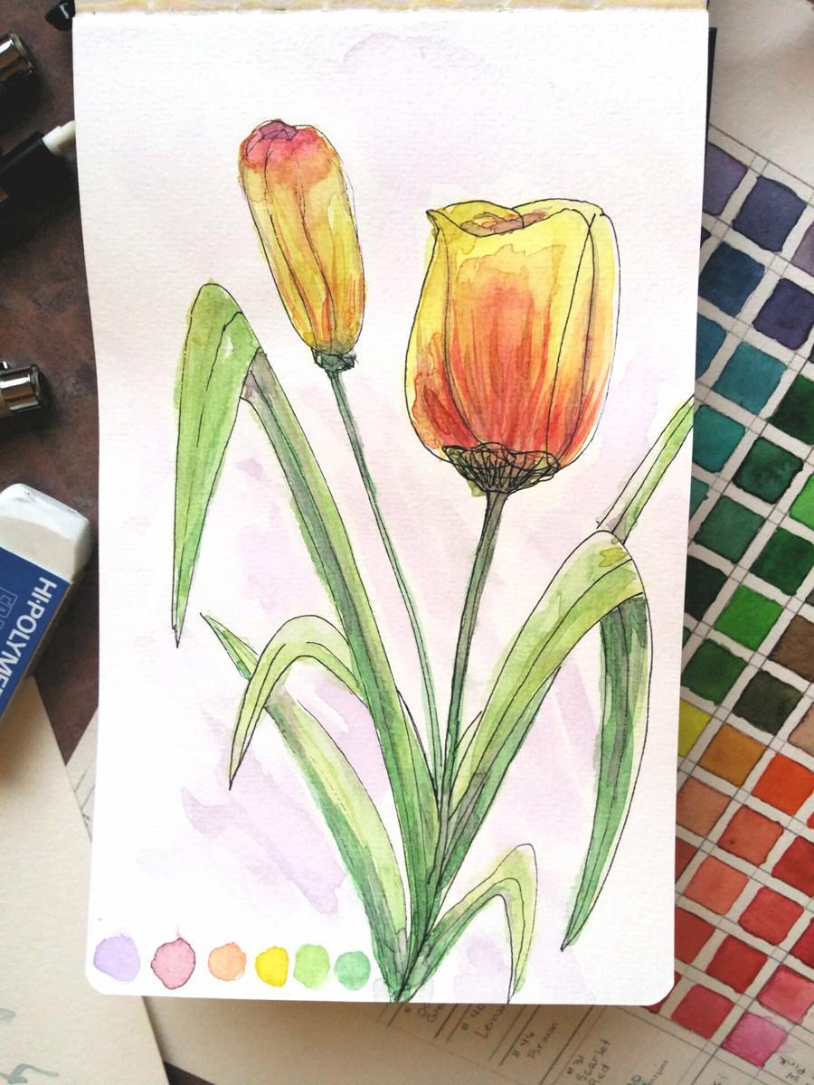 Botanical Sketchbook + - image 1 - student project