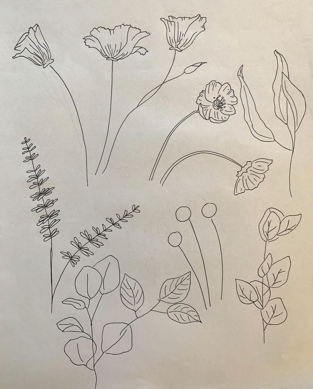 Poppy Bouquet :-) - image 3 - student project
