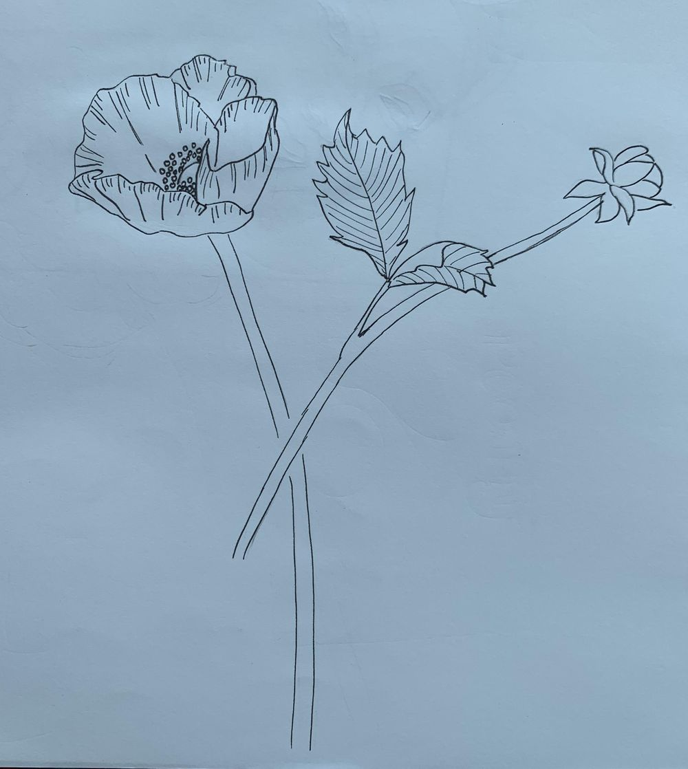 Poppy Bouquet :-) - image 1 - student project