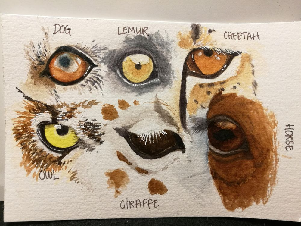 Working on eyes. - image 1 - student project