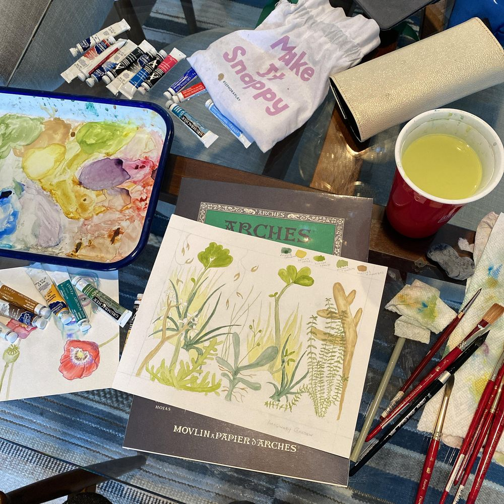 Imaginary Botanic Garden - image 1 - student project