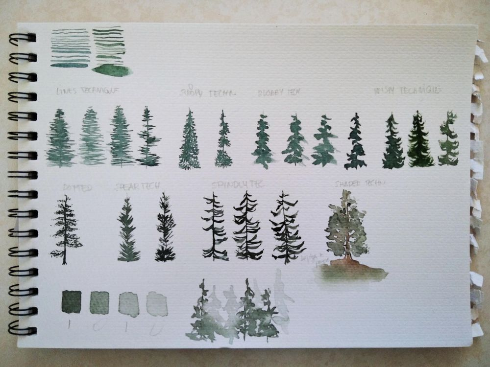 Watercolor pines - image 1 - student project