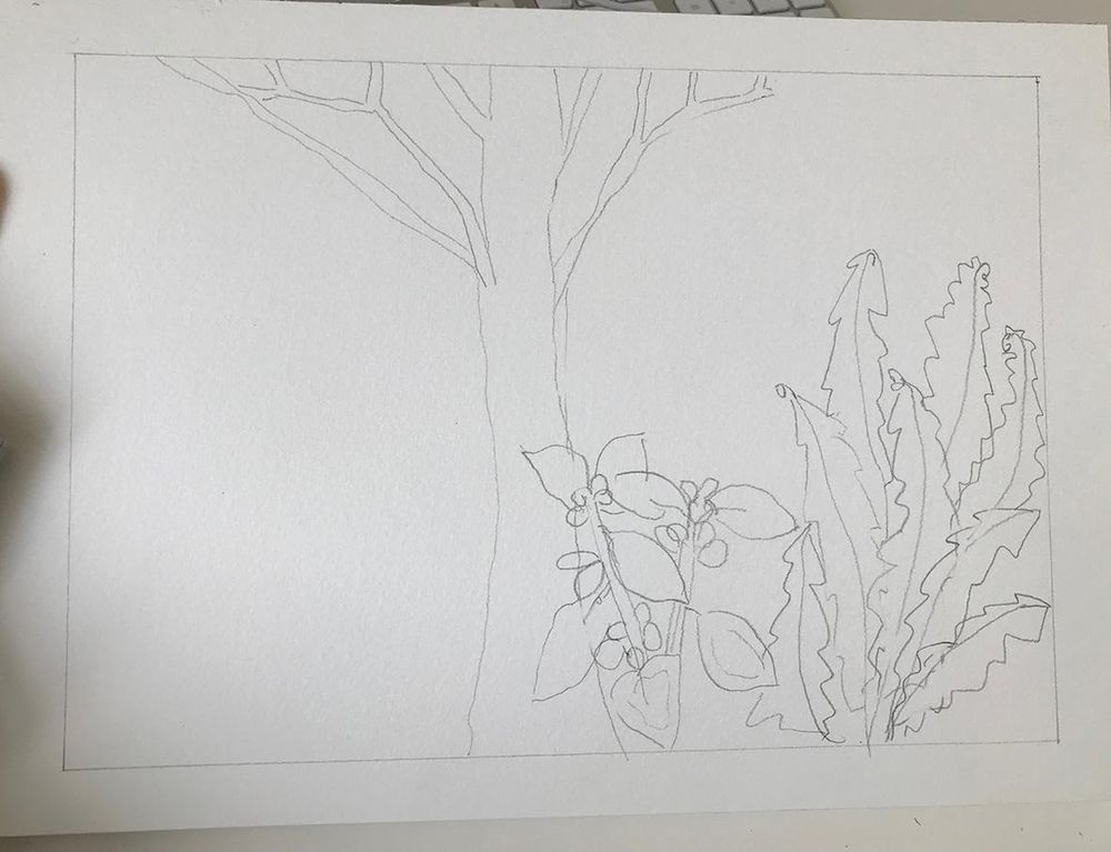 Magic Forest - image 6 - student project