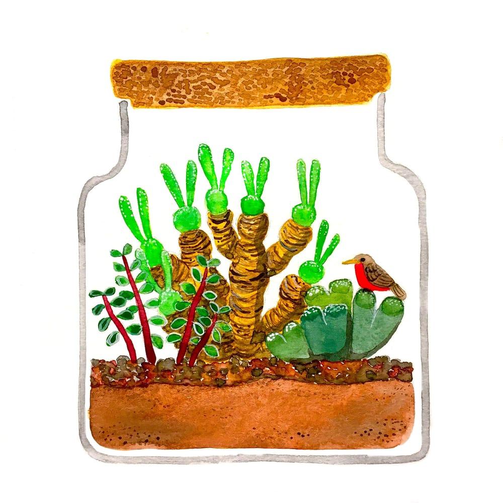 Succulent Terrarium - image 1 - student project