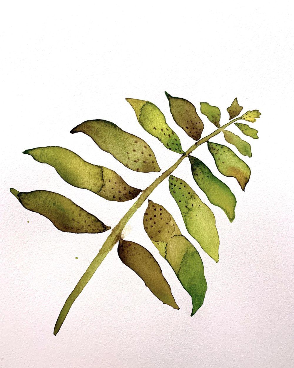 Watercolor Techniques - Leaf - image 3 - student project