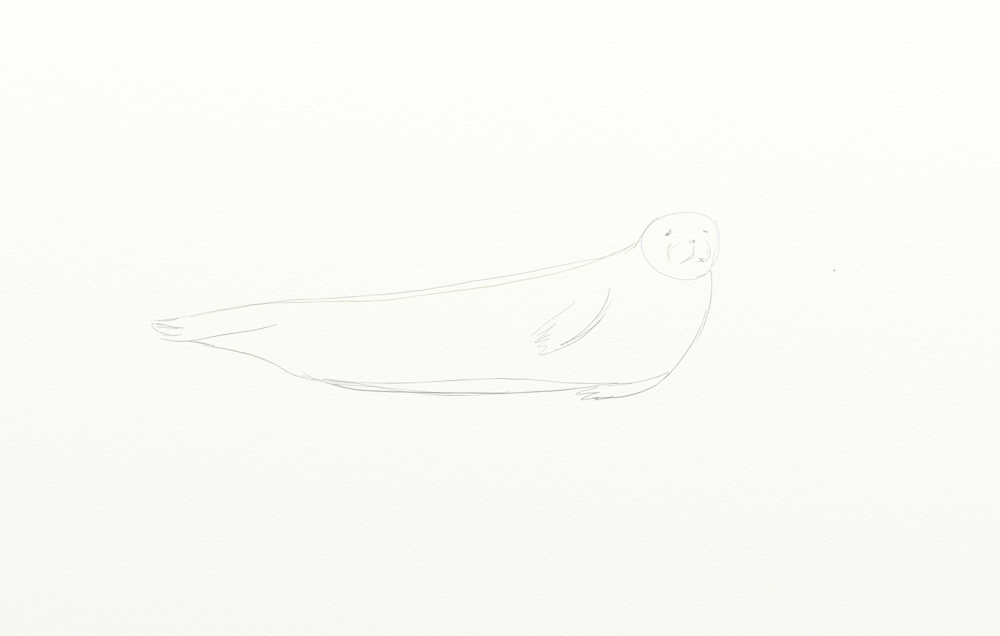 Seal - image 1 - student project