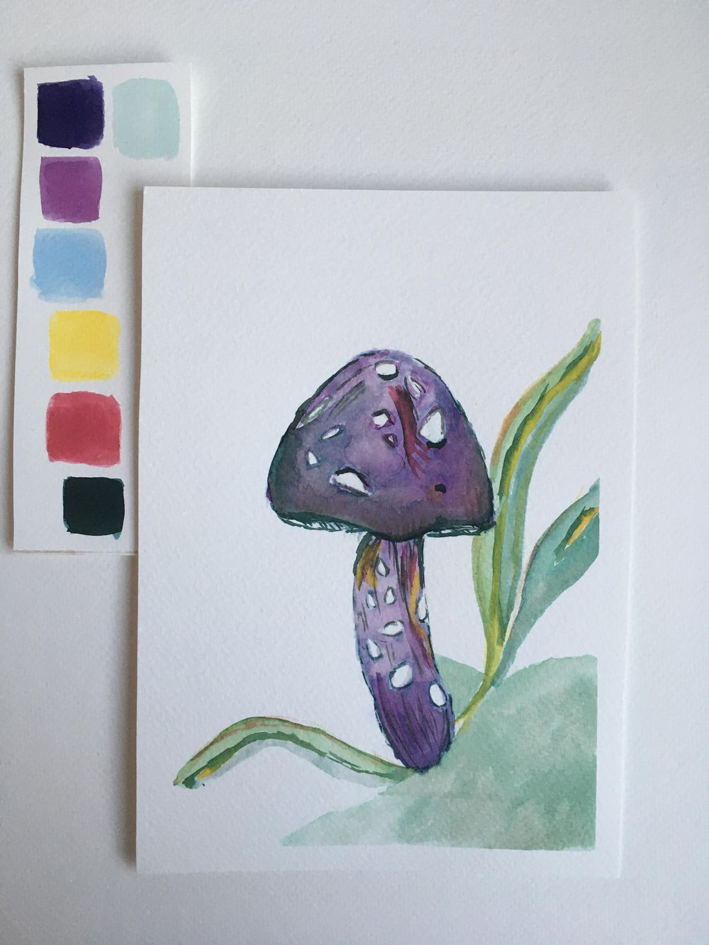 Mushroom and fern - image 1 - student project