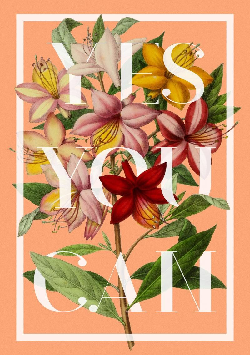 Botanical Illustrations with Typography - image 2 - student project