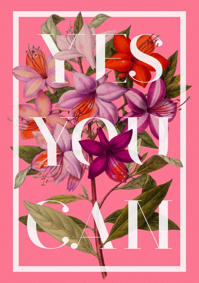 Botanical Illustrations with Typography - image 3 - student project