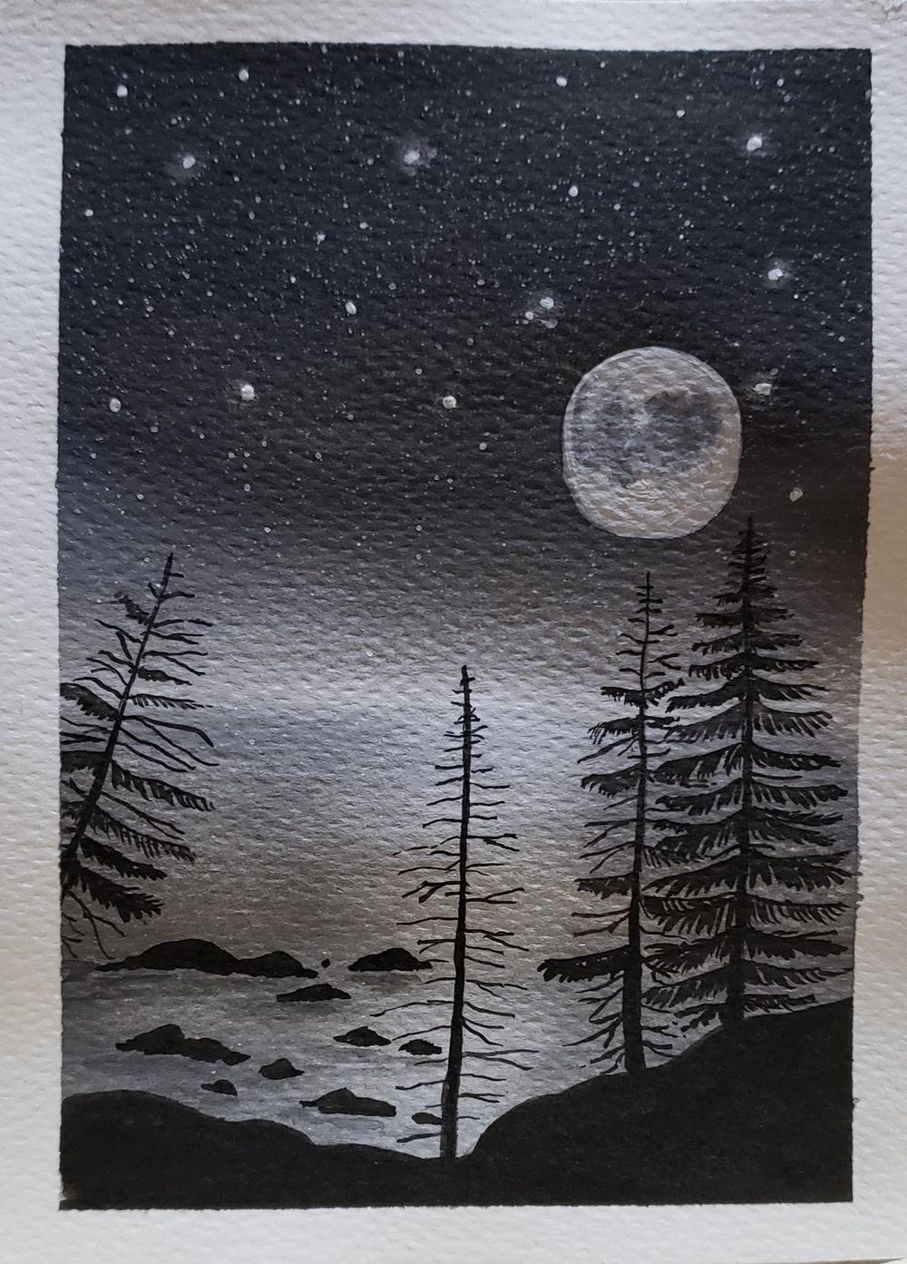 Campamento bajo las estrellas y Noche de luna llena - image 4 - student project