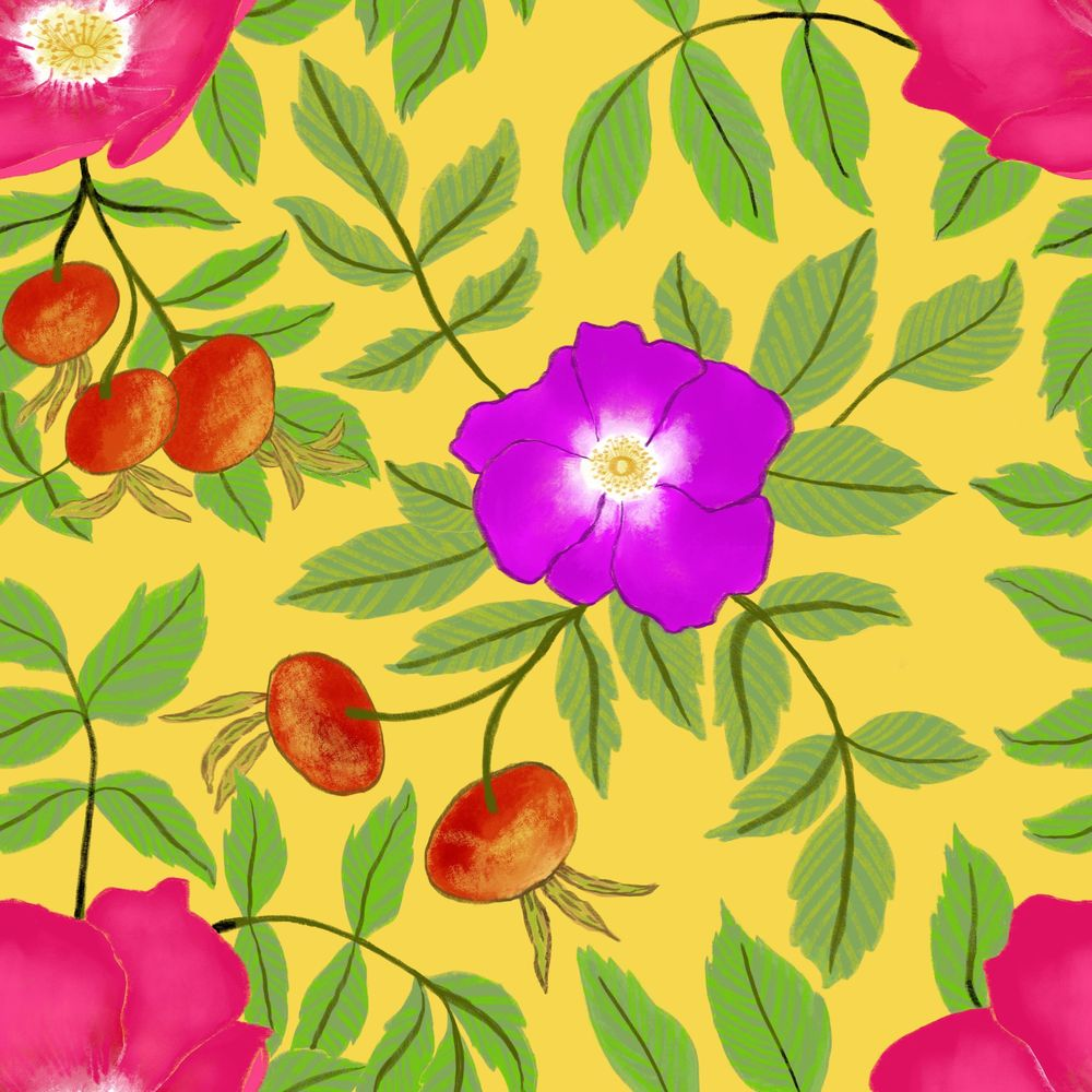 Rosa rugosa pattern - image 3 - student project