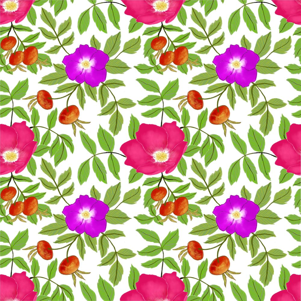 Rosa rugosa pattern - image 1 - student project