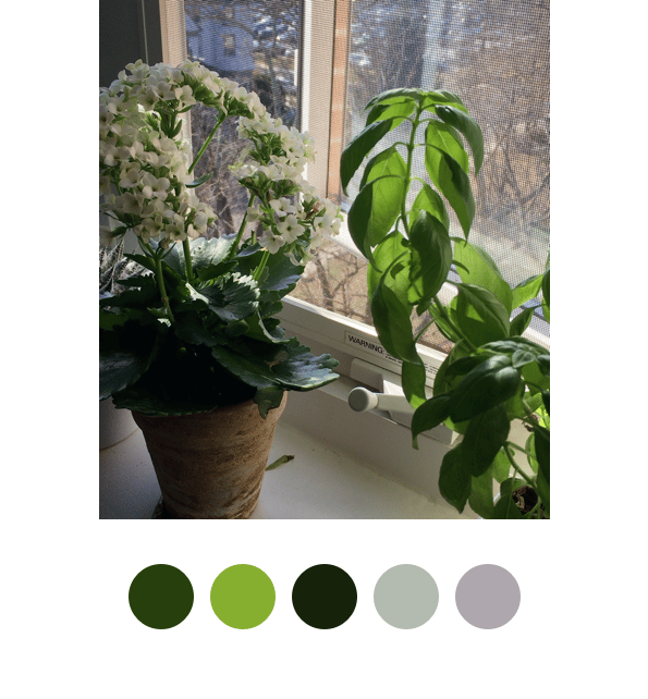 Color Palette Practice - image 5 - student project