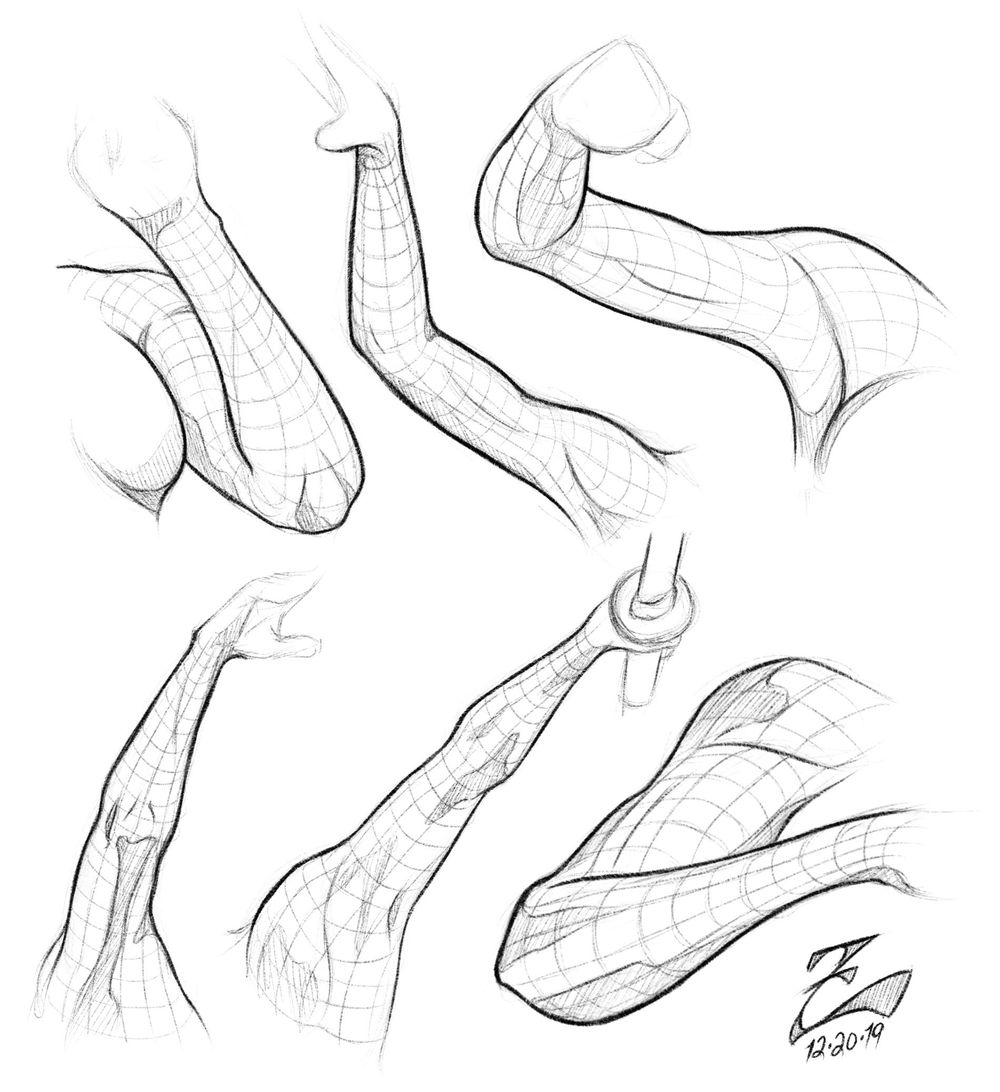 Female Arm Study - image 4 - student project