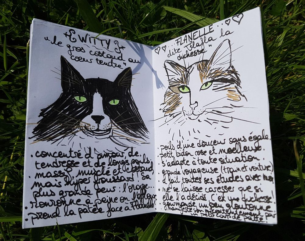 My zine - my cat family - image 2 - student project